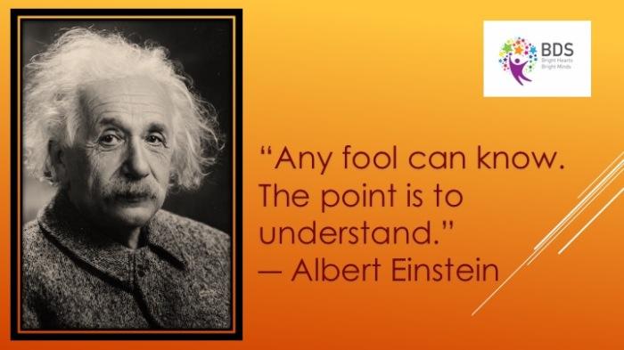 einstein-understand
